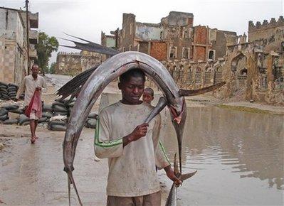 Somalia 6O0M DX News