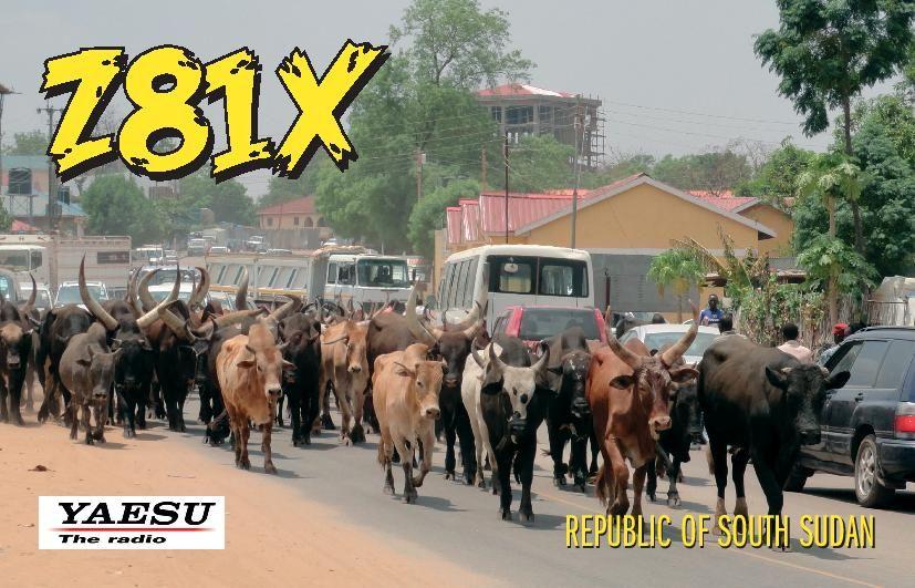 Южный Судан Z81X CQ WW DX CW Contest 2013 QSL