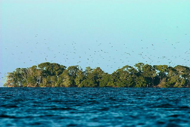 Остров Саут Уотер Кей South Water Cay V31JZ/P Белиз DX Новости
