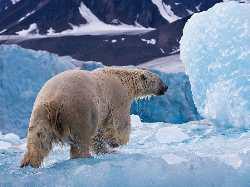 Spitsbergen Archipelago JW/UA3IPL Tourist Attractions