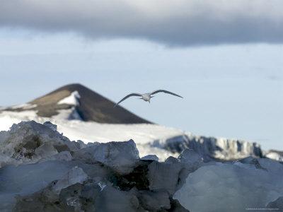 Svalbard Islands DX News JW5E JW7QIA JW5PHA