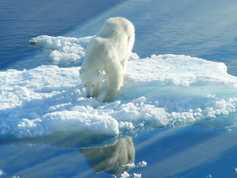 Svalbard Islands JW/DL2JRM JW/DO6XX