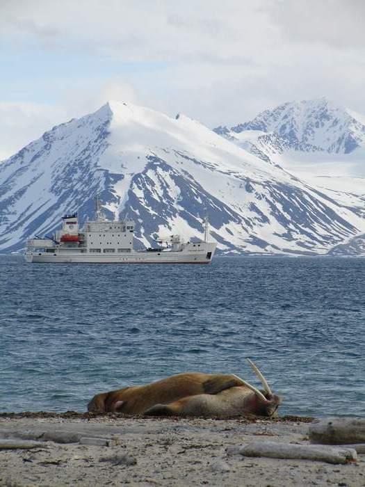 Svalbard Islands JW3C JW9DFA
