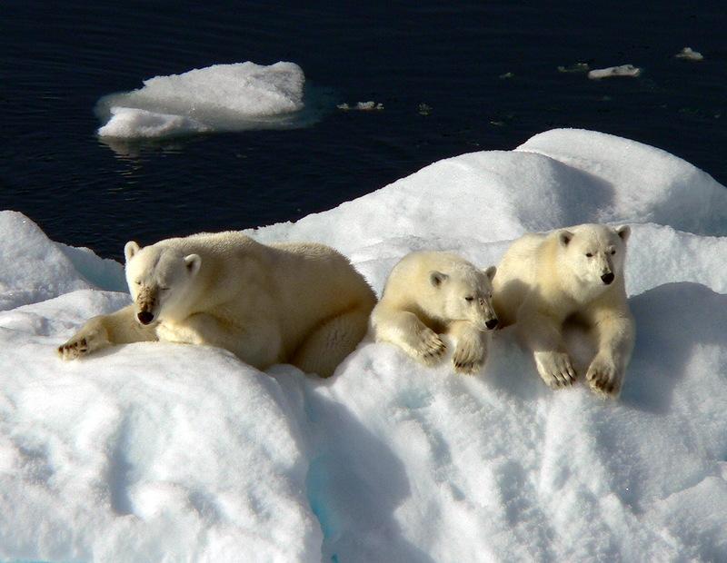 Svalbard Islands JW6VJA JW6VMA