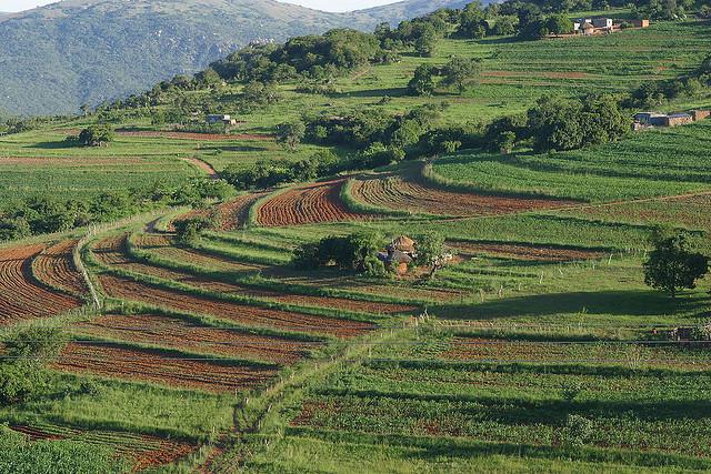 Свазиленд 3DA0ET
