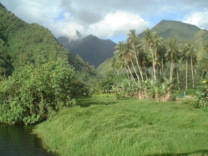 Image result for tahiti island image