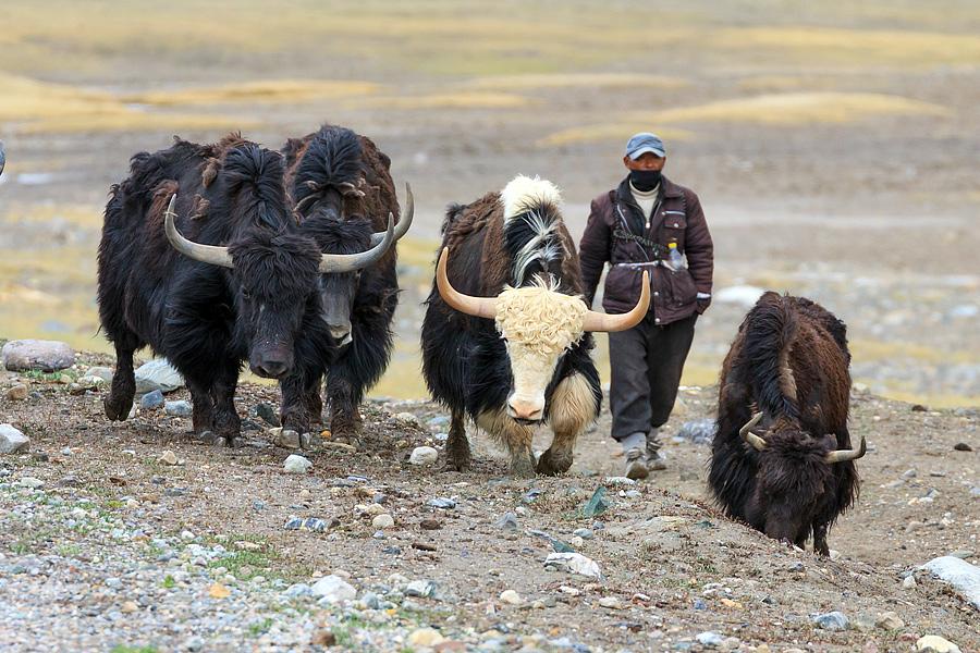 Таджикистан EY0A WW RTTY 2012