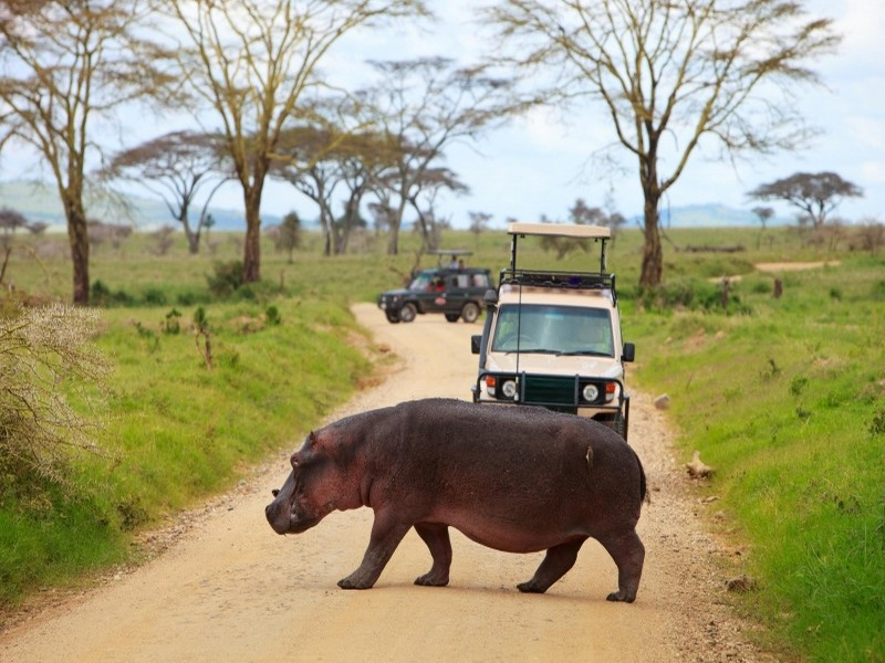 Танзания 5H2DK