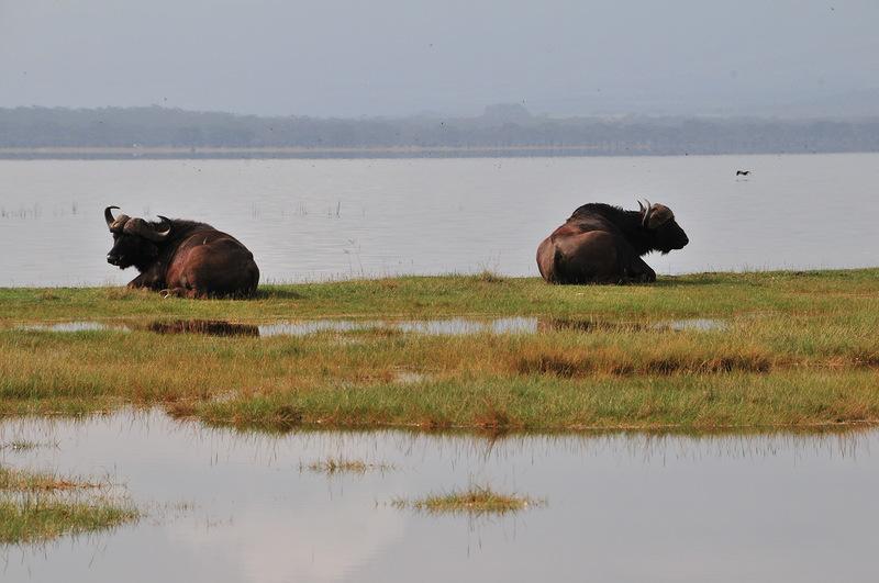 Танзания 5H3MB 2012 DX Новости