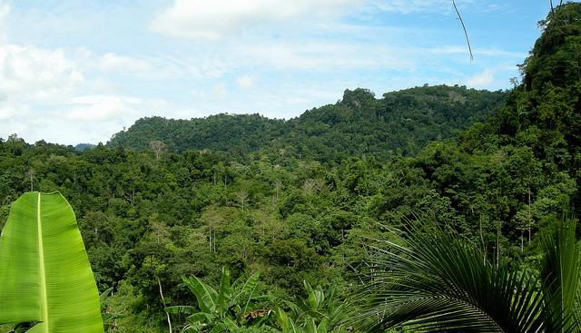 Остров Тави Тави DU8/JA1PBV DU8/WK1S