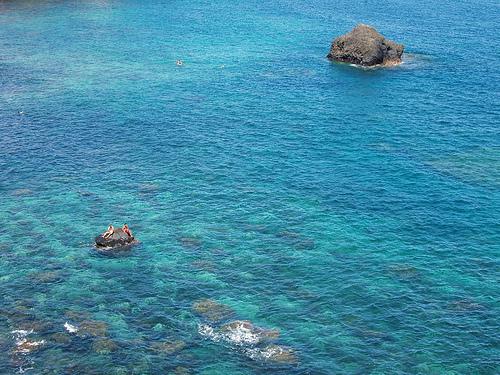 Tenerife Island ED8T