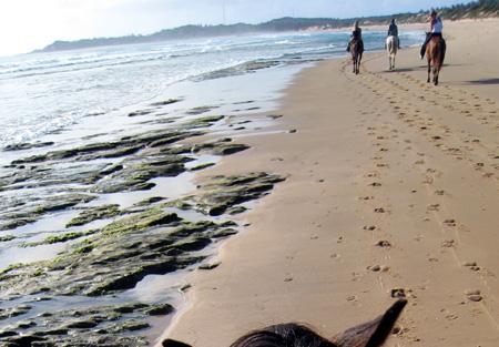 Tofo Mozambique C92DG Beach