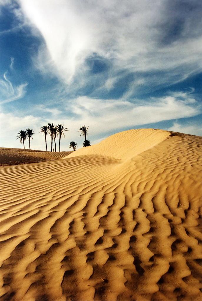 Tunisia 3V7A DX News
