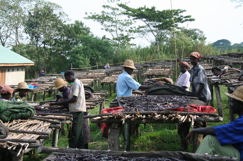 Uganda 5X1NH DX News 2013