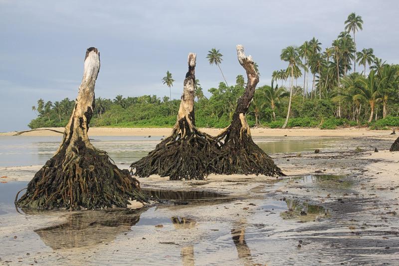 Upolu Island Samoa 5W0W