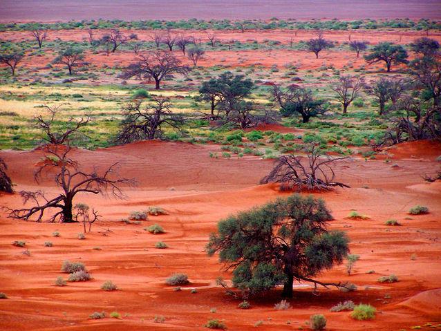 V5/DJ4SO Namibia Tourist Attractions