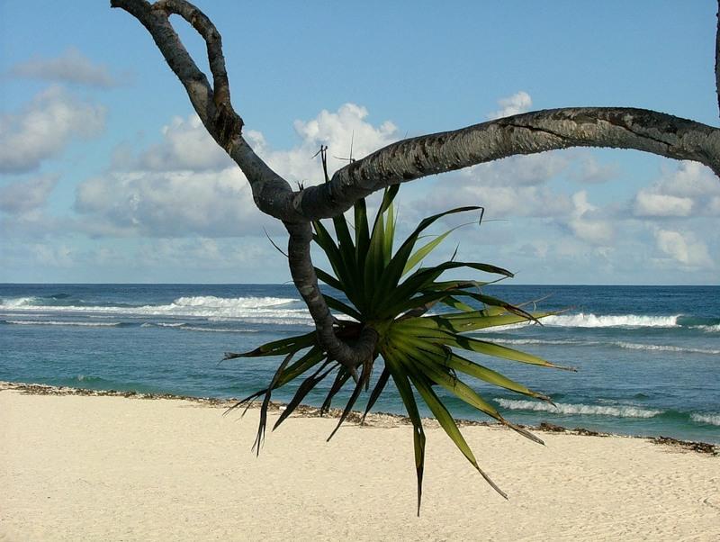 Vanuatu YJ0RK