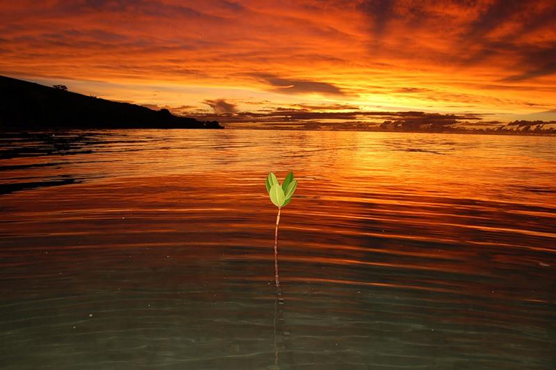 Остров Вити Леву Фиджи 3D2AR
