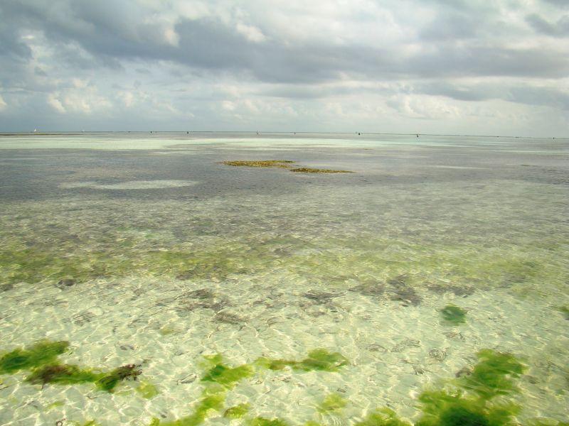 Zanzibar 5H1NE DX News