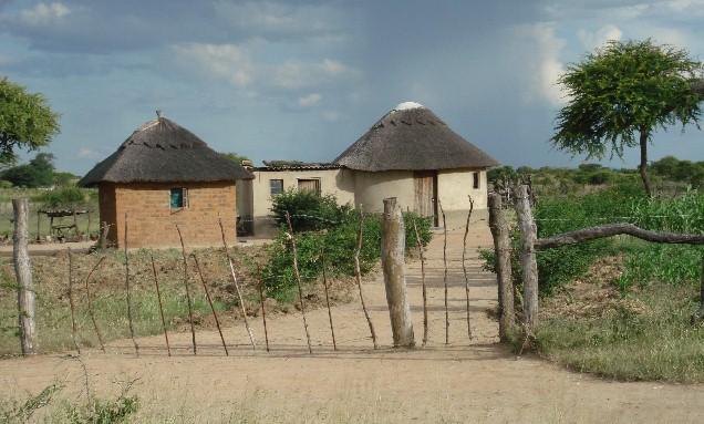 Zimbabwe Z21DXI