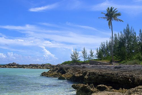 Andros Island Bahamas AF1G/C6A DX News