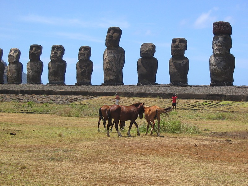Easter Island CE0Y/NL8F DX News