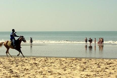 Gambia C5WP DX News 2012