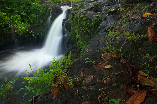 Pohnpei Island Micronesia Waterfall V63FAA Tourist Attractions
