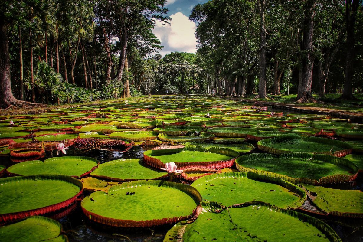 3B8MU Mauritius Tourist attractions spot