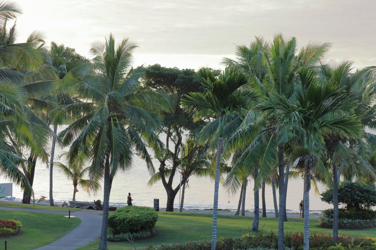 3D2DOM Viti Levu Island, Fiji Tourist attractions spot