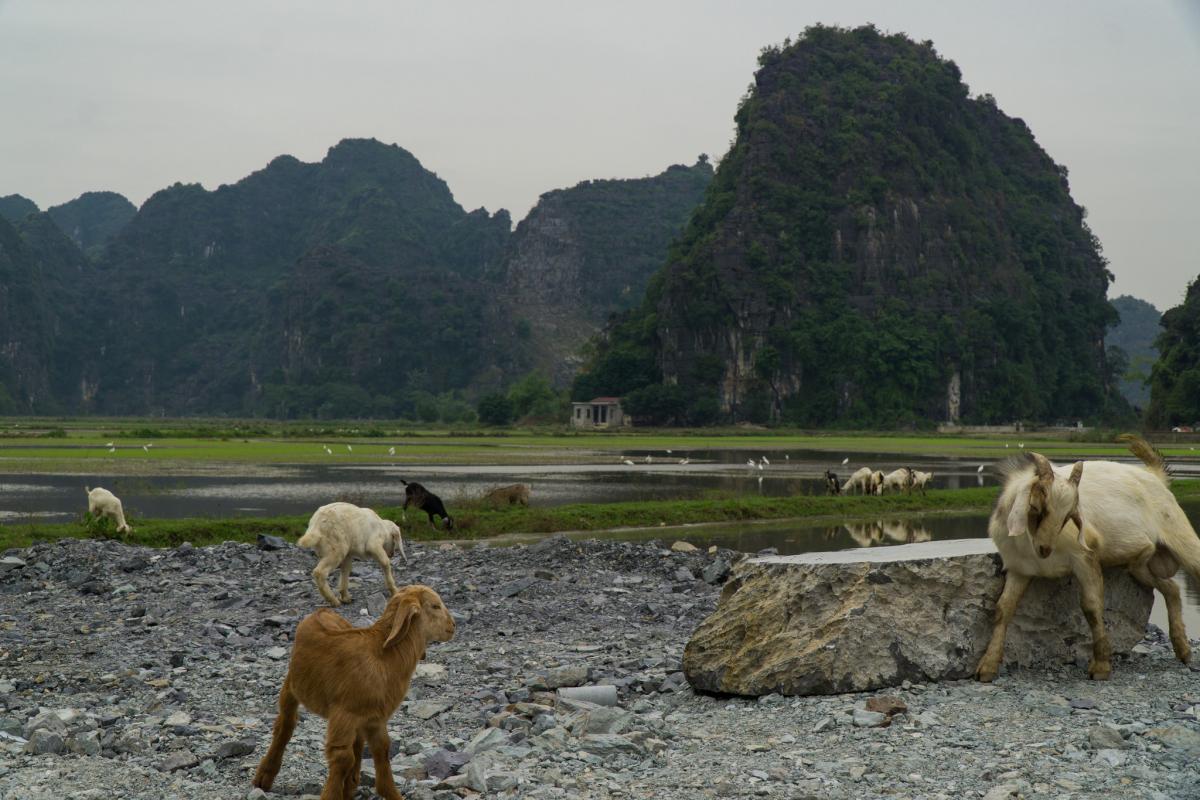 3W9DLE Vietnam Tourist attractions spot