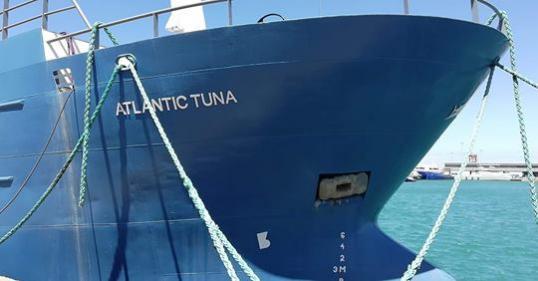 3Y0I Bouvet Island DX Pedition Atlantic Tuna