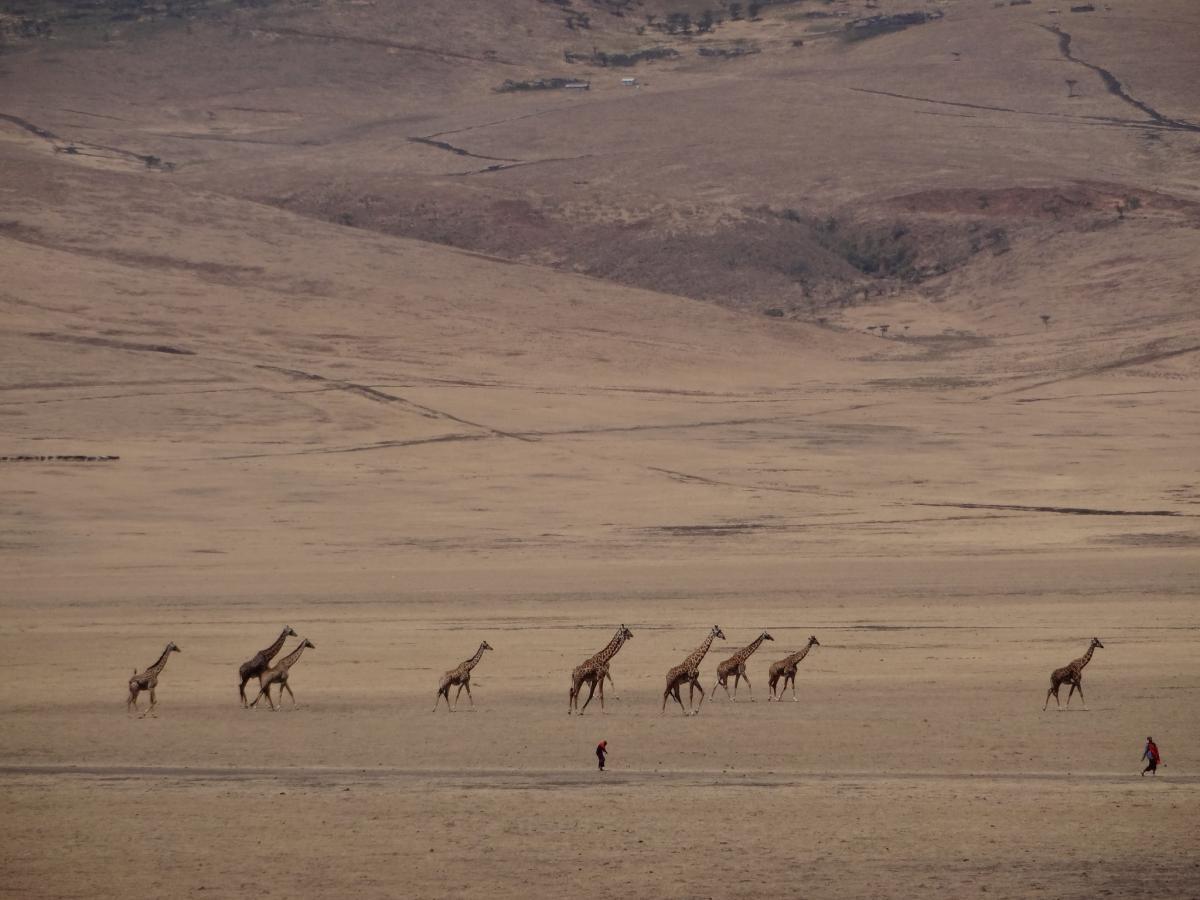 5H/ON5PF Tanzania Tourist attractions spot