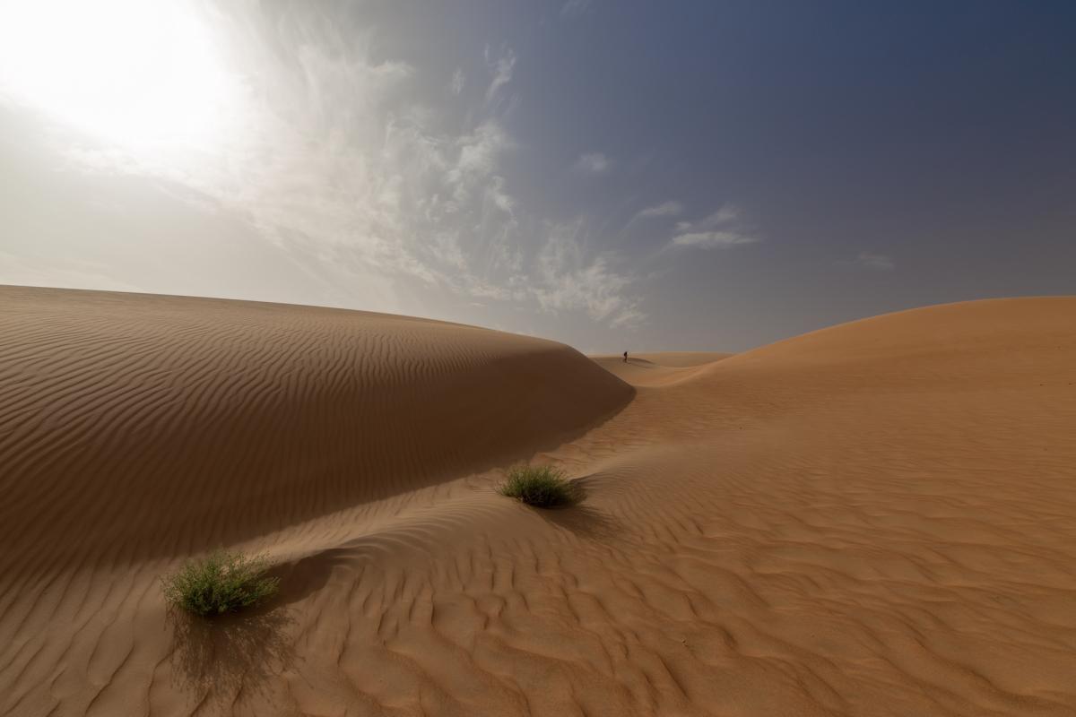 5T5PA Walking on the dunes, Mauritania.