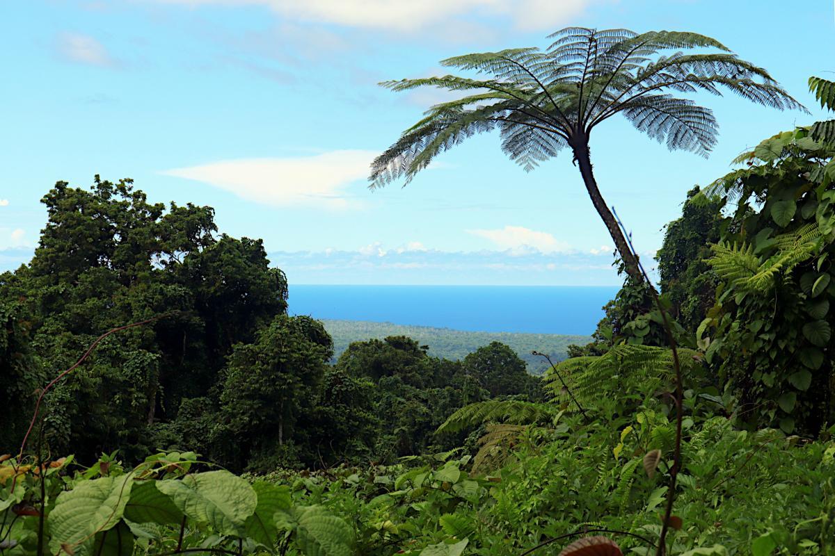 5W0H Fuafou, Samoa.
