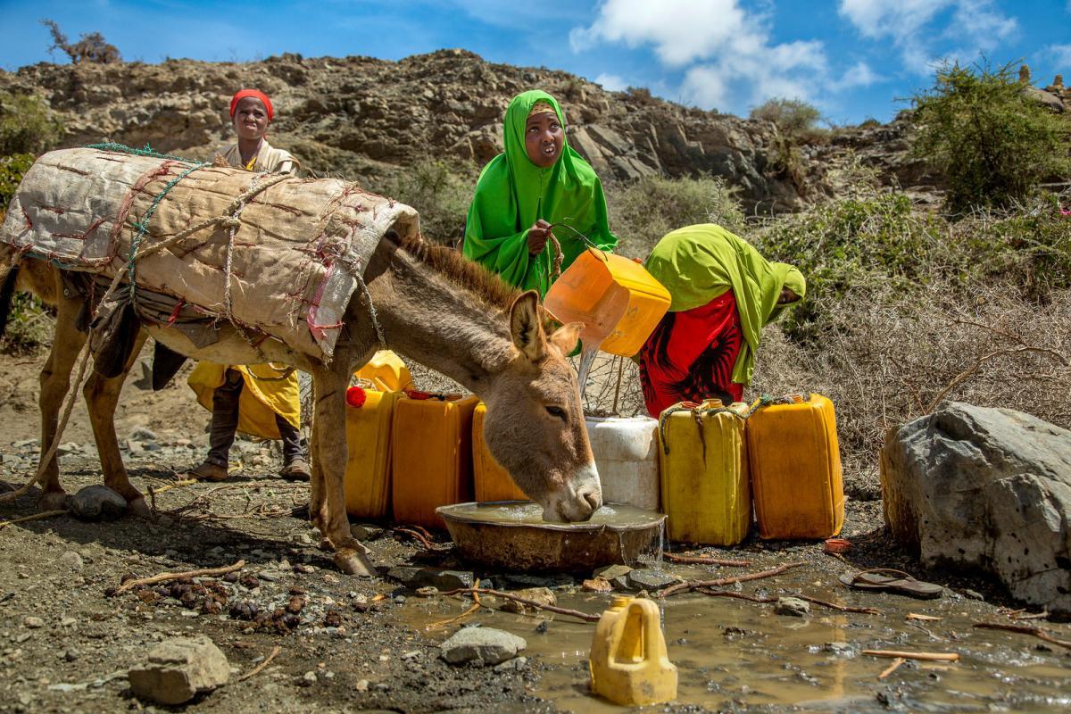 6O1AA Suuqsade, Somalia.