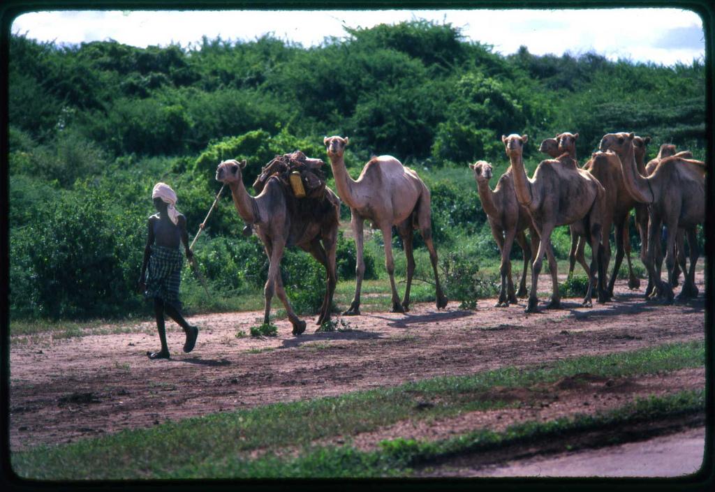 6O6O Сомали DX Новости