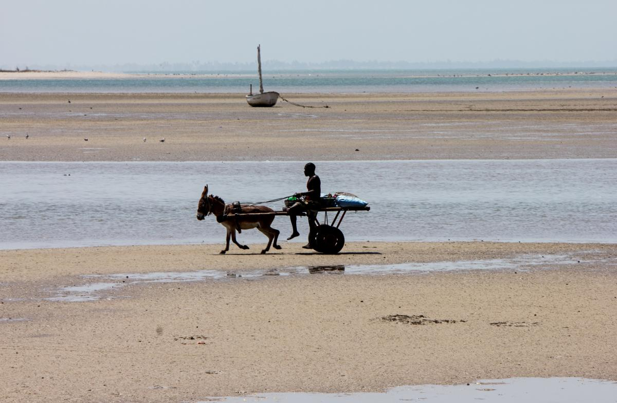 6W/DC4CQ Жоаль Фадиут, Тиес, Сенегал.