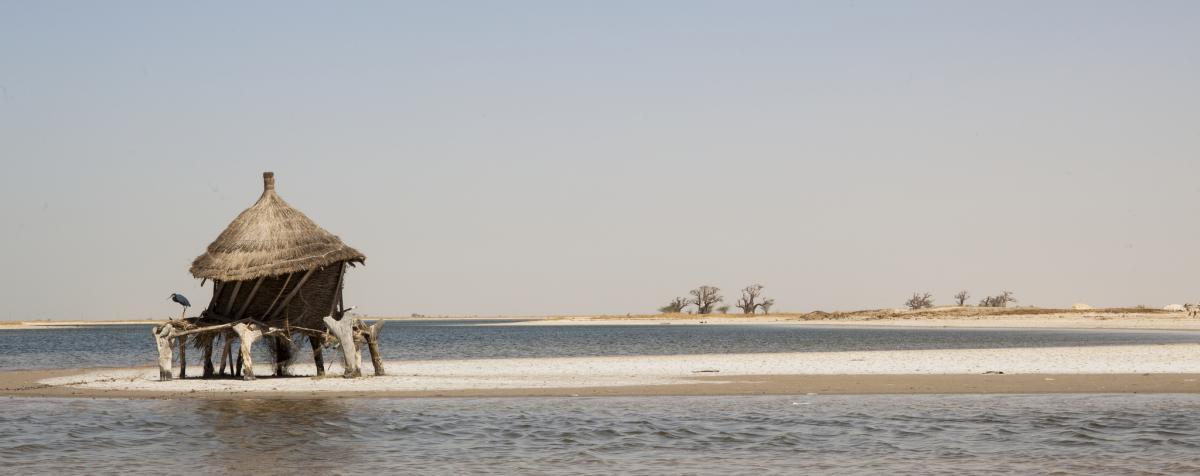 6W/IK5BSC Senegal