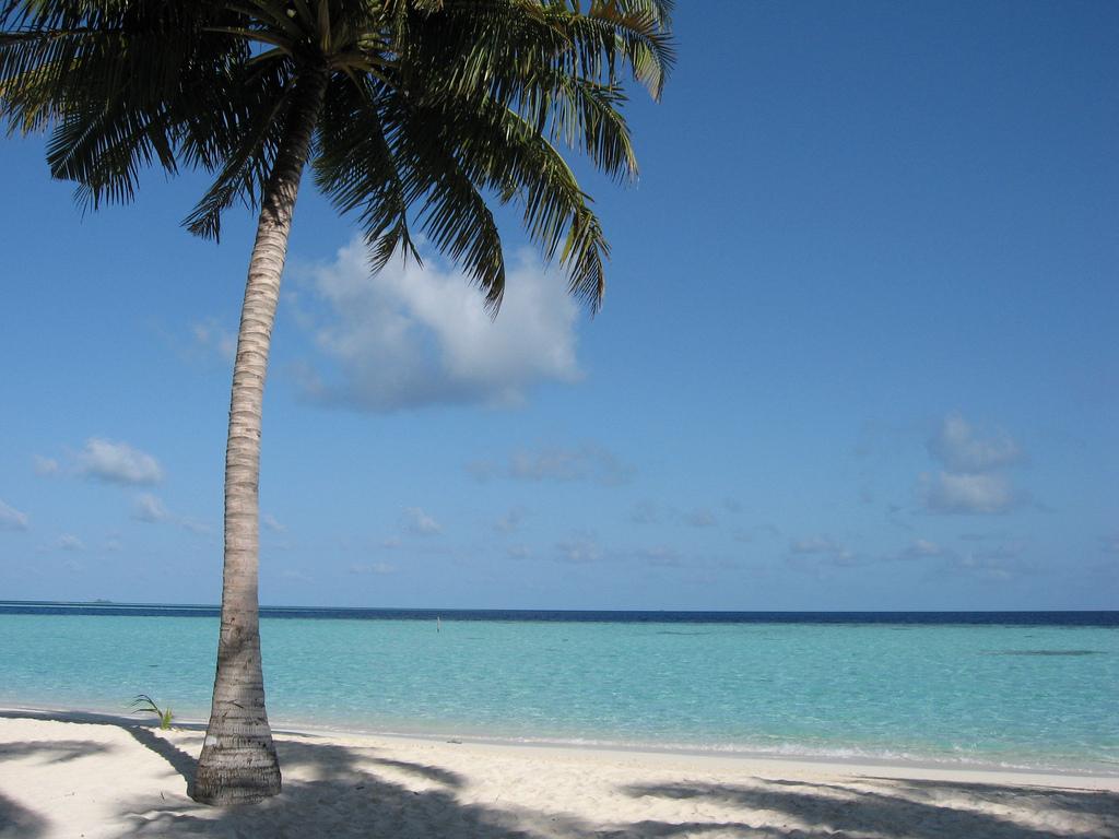 8Q7EC Остров Бияду, Мальдивские острова.
