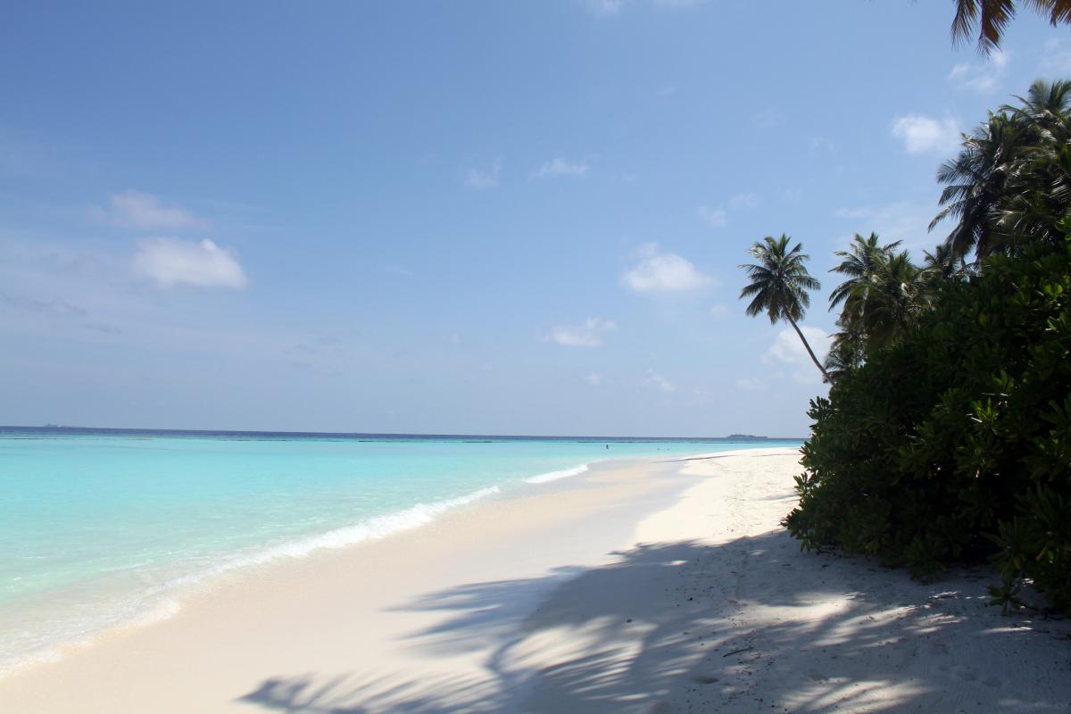 8Q7SD Halaveli Island, Alifu Alifu Atoll, Maldive Islands. DX News