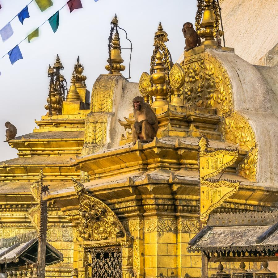 9N7BN Nepal Tourist attractions spot