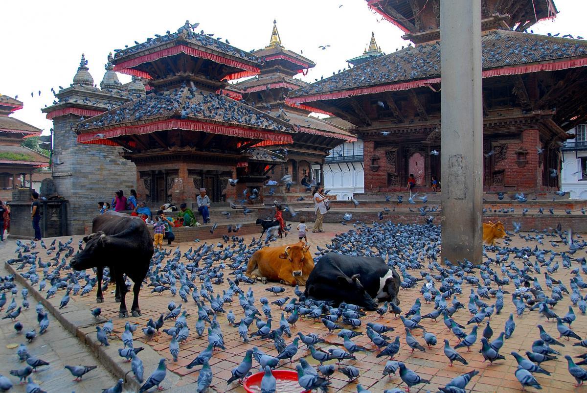 Nepal 9N7ES 9N7AE DX News  Durbar Square, Kathmandu