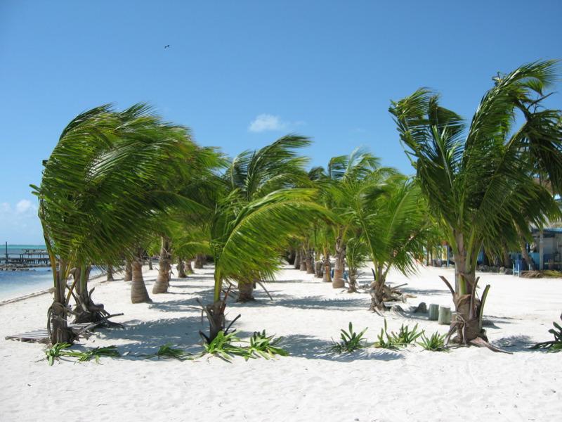 Ambergris Cay Island Belize V31JX DX News