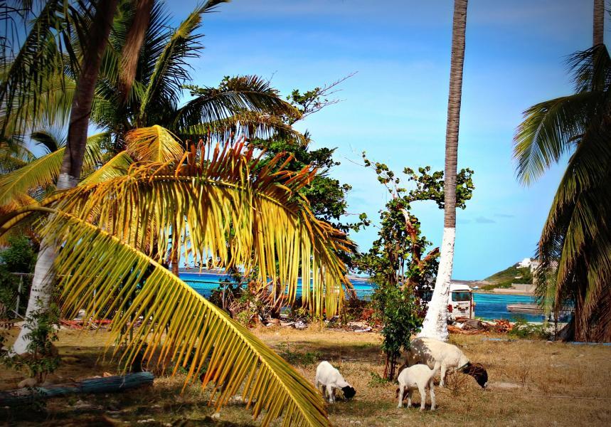 Остров Ангилья VP2EGR Туристические достопримечательности