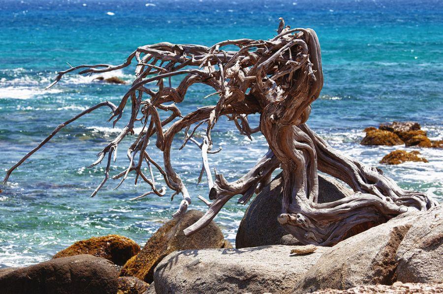 Aruba P40A Tourist attractions spot 2015