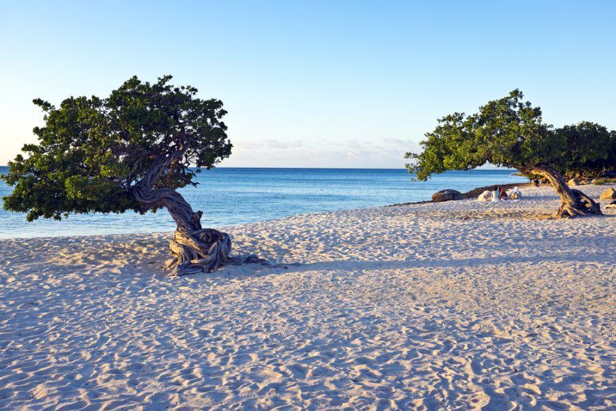 Aruba P40MH P40MA Tourist attractions spot
