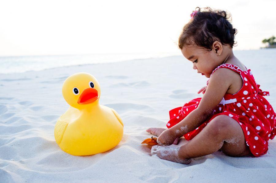 Aruba P45A Baby duck.
