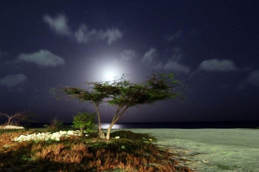 Aruba P4/DK3YD Tourist attractions spot