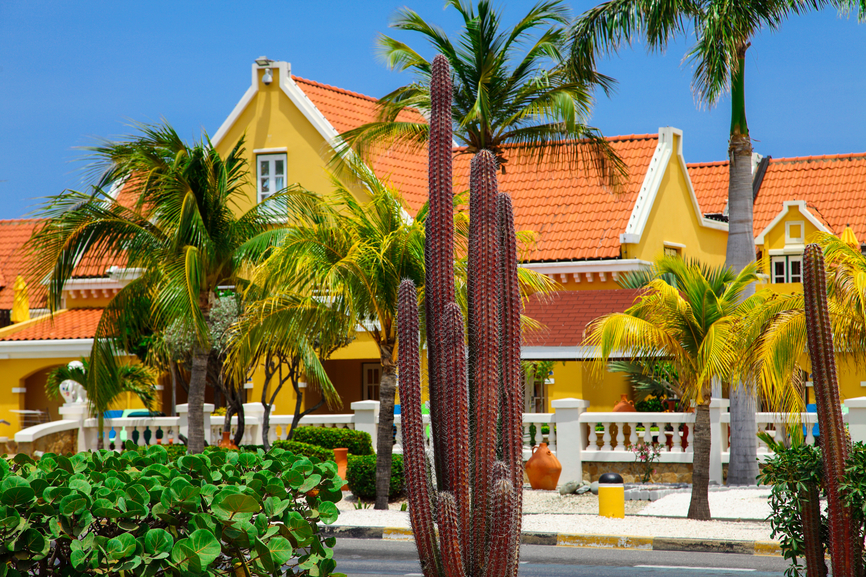 Aruba P4/IV3IYH DX News